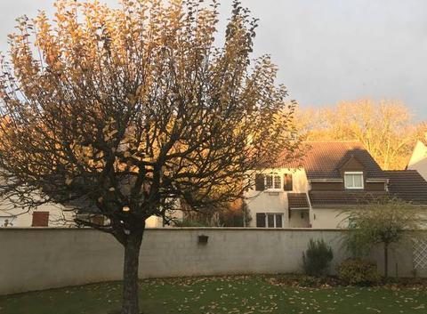 Lever de soleil en automne