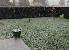 Neige Bar-sur-Aube 10200 Première neige :)