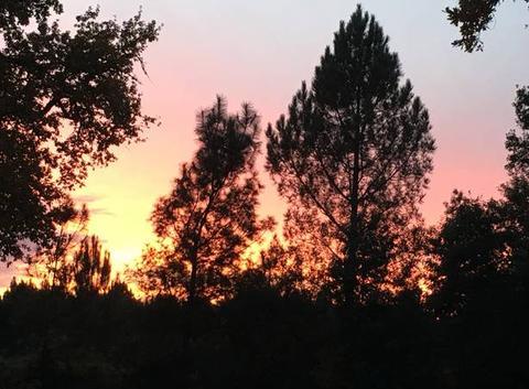 Couché de soleil landais un soir de novembre