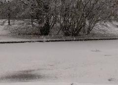 Neige Nantua 01130 Episode de neige à Nantua