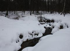 Neige Przemysl Ruisseau enneigé