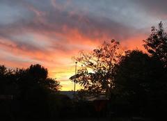 Ciel Basse-Goulaine 44115 Ciel d automne