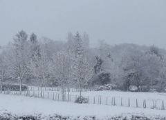 Neige Charantonnay 38790 Doux manteau blanc