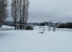 Neige Bonnac-la-Cote 87270 La nature est belle...