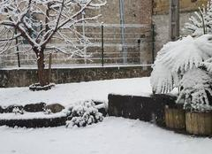 Neige La Flachere 38530 Jour Blanc