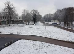 Neige Villers-les-Nancy 54600 Première neige