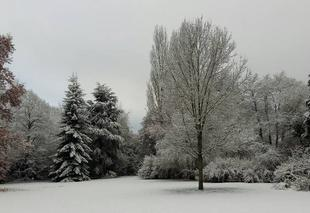 Neige Limoges 87000 Que c'est beau la neige !!!