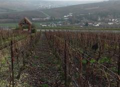 Nuages Mancy 51530 Les vignes