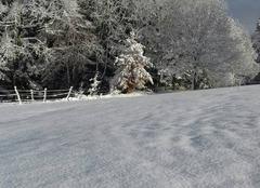 Neige Ussel 19200 20 cm de neige - Corrèze