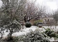 Neige Bedoin 84410 Premières neiges...