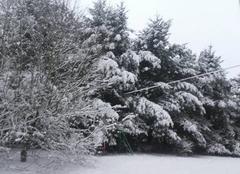 Neige Sauret-Besserve 63390 Sous la neige