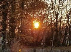 Ciel Sainte-Gemme 79330 Coucher de soleil