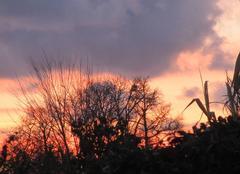 Ciel Saint-Malo 35400 Ciel matinal coloré
