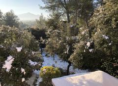 Neige Peyrolles-en-Provence 13860 Le soleil est de retour