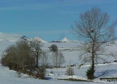 Neige Carsan 30130 Les Monts du Cantal.