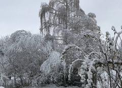 Neige Clermont-Ferrand 63100 Premières neiges à Clermont depuis longtemps