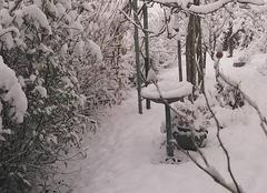 Neige Le Grand-Serre 26530 Le Grand Serre sous la neige