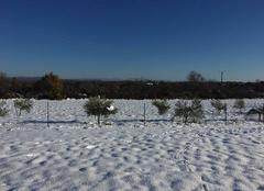 Neige Pourcieux 83470 Neige décembre 2017