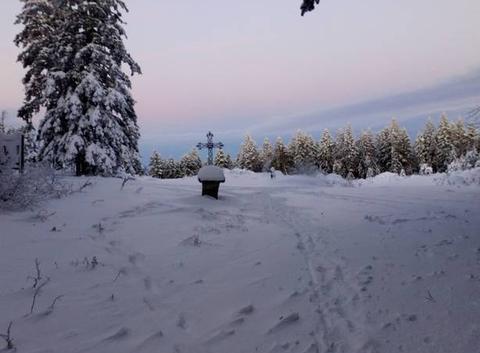 Promenade dominicale dans les bois du Haut Forez chambacien...