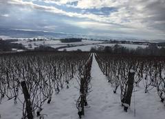 Neige Couches 71490 Saint-Jean de Trézy sous son blanc manteau...