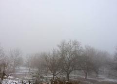 Brouillard Saint-Cassien 38500 Brouillard du matin -Saint cassien