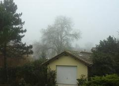 Brouillard Puynormand 33660 Ciel de decembre