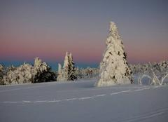 Neige La Bresse 88250 Couleurs hivernales