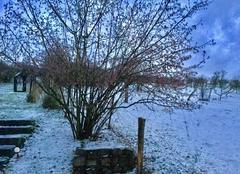 Neige Lesmenils 54700 Surprise ! De la neige