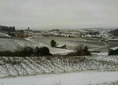 Neige Le Mesnil-sur-Oger 51190 Neige