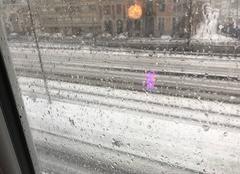 Neige Marcq-en-Baroeul 59700 Averse de neige à Marcq-en-Baroeul