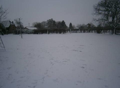 Olivier neige sur l avesnois
