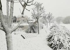 Neige Pepingen Tombe la neige