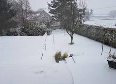 Neige Duntzenheim 67270 Neige en plaine d'Alsace