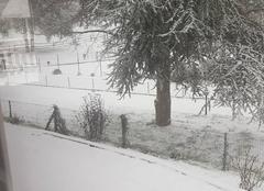 Neige Wissembourg 67160 Neige