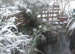 Neige Gravelines 59820 Première neige.