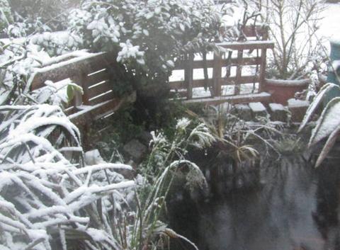 Première neige.