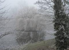 Brouillard Peronne 80200 FEERIE DU GIVRE