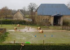 Pluie Guehebert 50210 Beaucoup de pluie