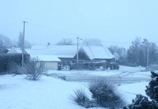 Tempête Rebreuve-Ranchicourt 62150 Ambiance hivernale dans l'Artois