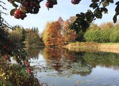 Faune/Flore Mael-Carhaix 22340 Couleur d automne