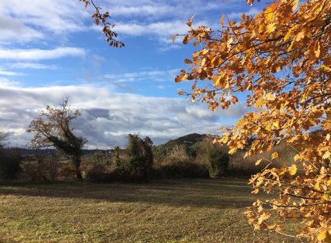 Un peu de soleil ⛅️🌤 en campagne après la pluie d'hier..
