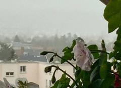 Ciel Rueil-Malmaison 92500 Grosse pluie