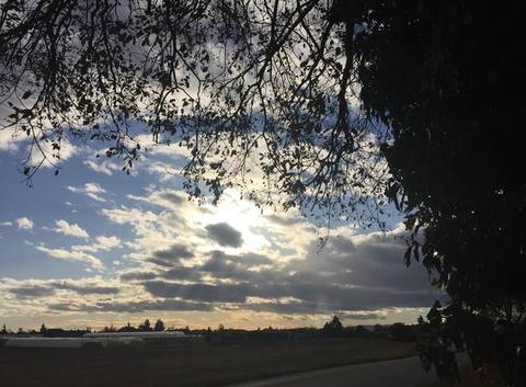 Ciel moutonneux d'après-midi