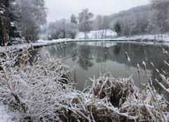 Neige La Chapelle-Villars 42410 Noël avant l?heure