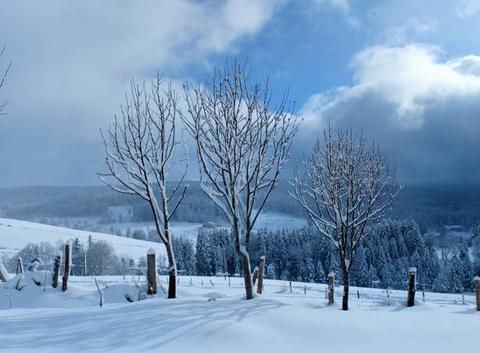 40 cm de neige aujourd'hui!