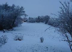 Neige Replonges 01750 La neige est tombée