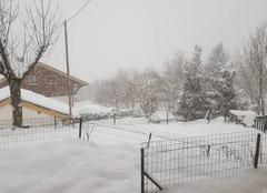 Neige Seez 73700 Chute de neige