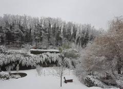 Neige Jardin 38200 La neige le matin
