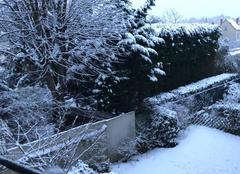 Neige Tassin-la-Demi-Lune 69160 Snow