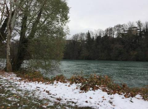 Neige sur les bords d'Isère